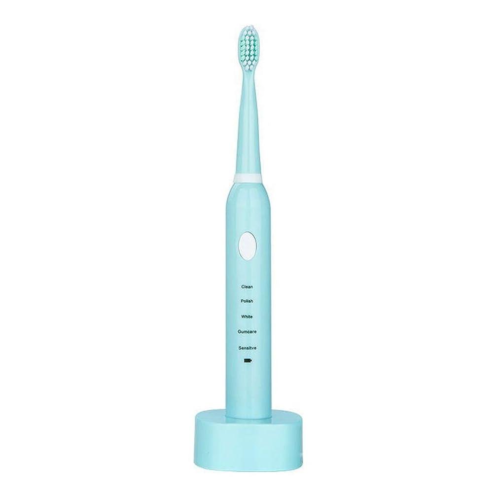 排泄する除去浸透するUSBの充満基盤のホールダーと防水電動歯ブラシ 完全な口腔ケアのために (色 : 青, サイズ : Free size)