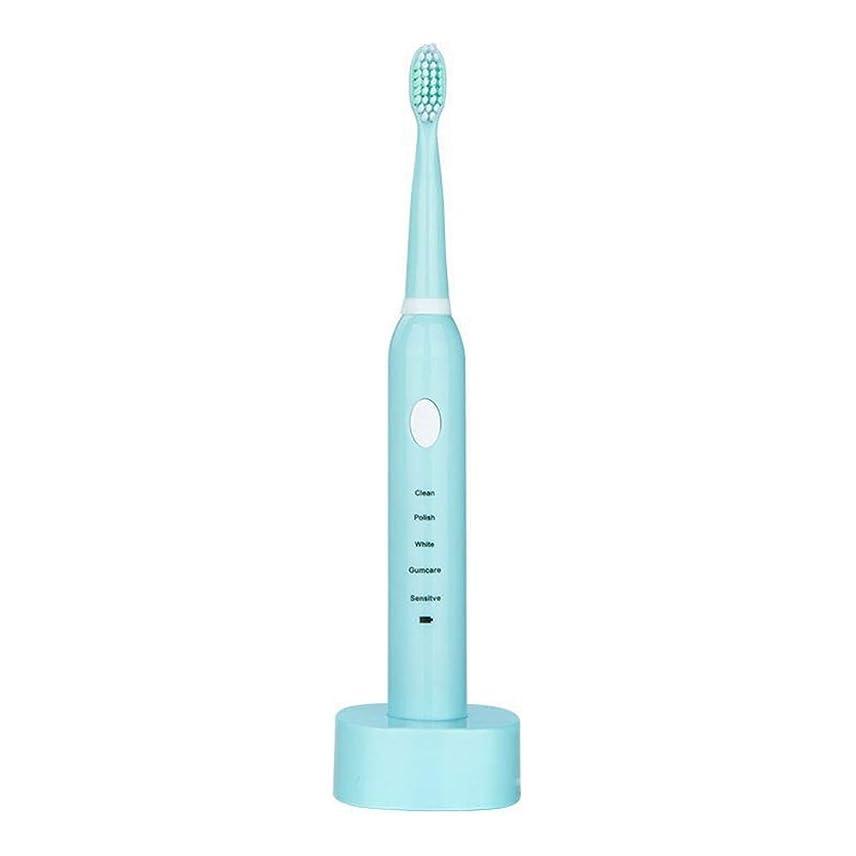 現在整理する世論調査電動歯ブラシ USBの充満基盤と防水男女兼用の電動歯ブラシ(青、ピンク) (色 : 青, サイズ : Free size)