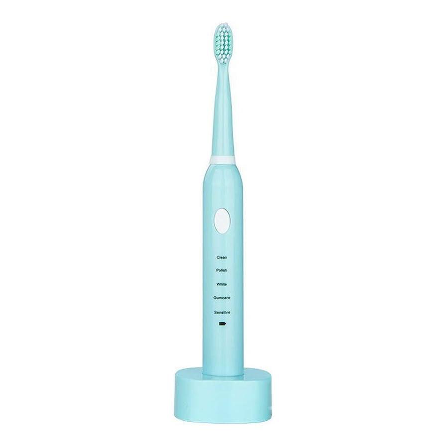 電動歯ブラシ USBの充満基盤と防水男女兼用の電動歯ブラシ(青、ピンク) (色 : 青, サイズ : Free size)