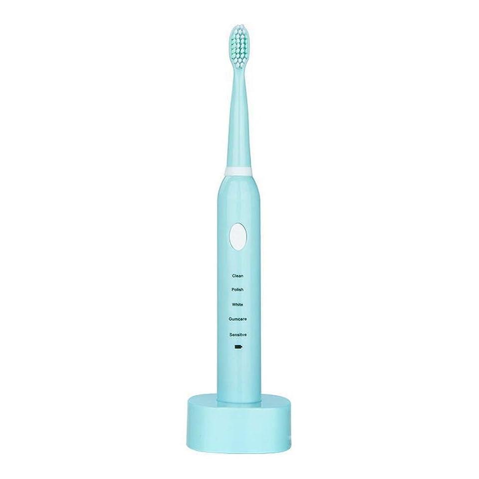 調和のとれたバイアス軽蔑する電動歯ブラシ USBの充満基盤と防水男女兼用の電動歯ブラシ(青、ピンク) (色 : 青, サイズ : Free size)