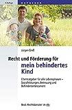 Recht und Förderung für mein behindertes Kind: Elternratgeber für alle Lebensphasen - Sozialleistungen, Betreuung und Behindertentestament (Beck-Rechtsberater im dtv)