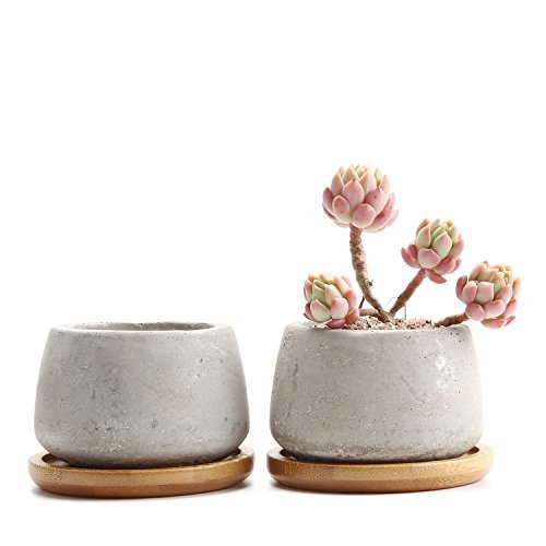 T4U 6,5cm Zement Sukkulenten Töpfchen mit Untersetzer Rund 2er-Set, Beton Mini Blumentopf für Kaktus Miniaturpflanzen
