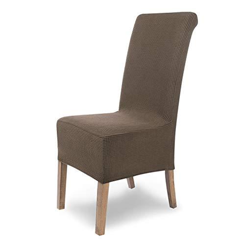 SCHEFFLER-Home Sofia 6 Fundas de sillas, Estirable Cubiertas, Velours extraíble flexibel Funda con Banda elástica, Topo