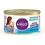 Halo Kitten Food, Grain Free, Kitten Wet Food, Whitefish Pate 3oz Can (Pack of 12)
