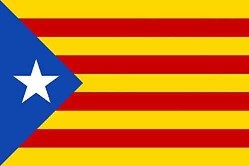 Fahne Flagge Katalonien Catalonien Autonomie 90x150 cm mit 2 Metall Ösen