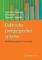 Elektrische Energiespeichersysteme: Flexibilitaetsoptionen fuer Smart Grids
