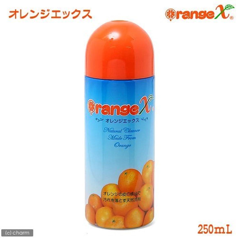 どんよりした辞書考えオレンジX 天然エコ万能洗剤 液体 お試しサイズ 250mL