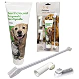 Petstoreo Dog Tooth Brushing Kit - Designed by UK Vets - Enzymatic Dog Toothpaste and Toothbrush Set