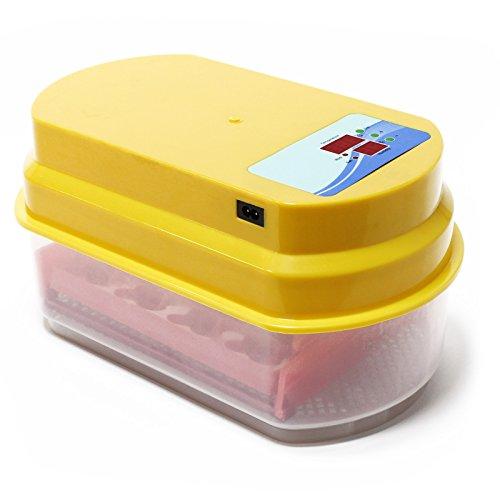 Incubadora automática 12 huevos control temperatura Incubación Criadero Control Temperatura Aves