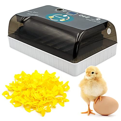 PROBEEALLYU 12 Eier Inkubator 12 Kapazitäten Digitaler Brutmaschine Brutgerät Hatcher Automatischer LED Kerze Feuchtigkeitsregler Sichtbare Abdeckung mit 100 Stück Anti Pecking Hühnergläsern