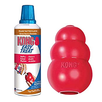 KONG - Classic Dog Toys with Easy Treat Peanut Butter Dog Treats 8 Ounce - for Small Dogs