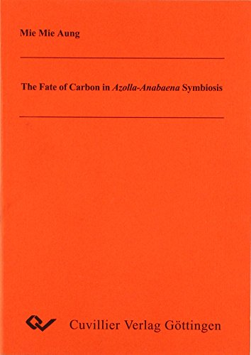 The Fate of Carbon in Azolla-Anabaena Symbiosis