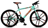 LAMTON Elektro-Bike 26 Zoll Folding Fat Tire Bike Schnee Mountain Bikes, Herrendoppelscheibenbremse Hardtail Mountainbike, Fahrrad Adjustable Seat, High-Carbon Stahlrahmen E-Bike