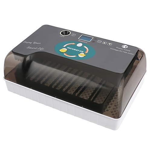 Homdox automatico Pet feeder food dispenser 4pasto per gatto cane timer programmabile per piccolo, medio, grande dimensione Pet Cat Dog, Infradito colorati estivi, con finte perline
