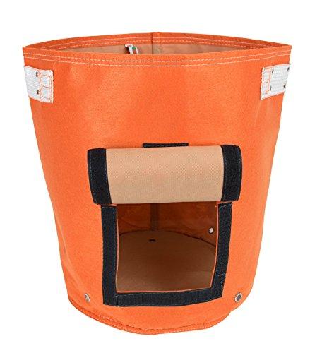 Bloem 0814174020821 Bagz Potato Tequila Sunrise Vaso da Esterno in Plastica, Unica
