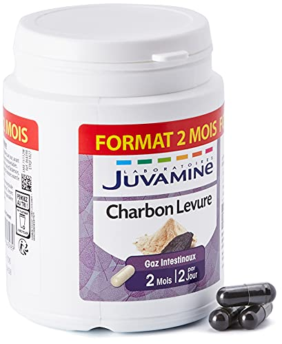 Juvamine Charbon Levure Gaz Intestinaux 120 Gélules