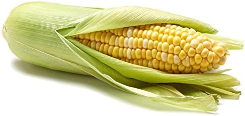 Sweet Corn, 1 Ear