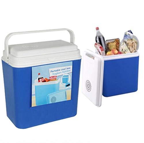 Wheels N Bits 22 Litre 12 Volt Cooler box Ice For Camping Caravan Motor Home Car Van Truck Power ABs Box with lid