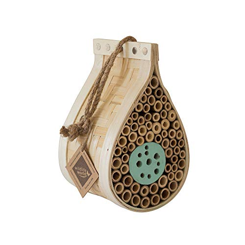 Wildlife World DEWIH Dew Drop Insect House - Natural