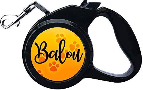Cadouri Hundeleine » personalisiert mit Name deines Hundes «┊Flexileine┊Länge 300 cm┊bis 25 kg