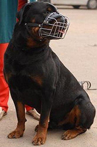 Starke Metall-Hund Maulkorb, mit Gürtel zwischen den Augen, für Rottweiler und Mastiff und andere (R2, Schwarz)