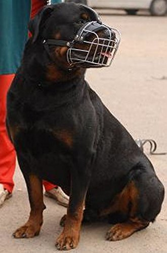 New Metal Strong Wire Basket Dog Muzzle for Rottweiler , mastiff etc. R2 with strip between the eyes