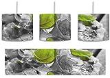leckere Pizza mit Schinken und Pilzen schwarz/weiß inkl. Lampenfassung E27, Lampe mit Motivdruck, tolle Deckenlampe, Hängelampe, Pendelleuchte - Durchmesser 30cm - Dekoration mit Licht...