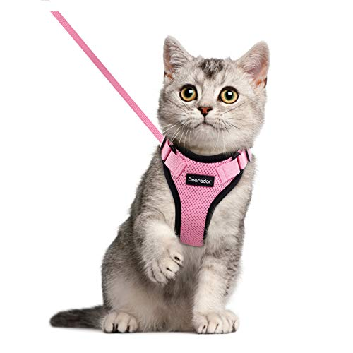 Dooradar Cat Harness and Leash for Walking, Escape Proof Pet Harness, Adjustable Soft Mesh Vest Jacket with Reflective Strips & 1 Metal Leash Ring, Breathable Safety and Easy Control for Small Cat
