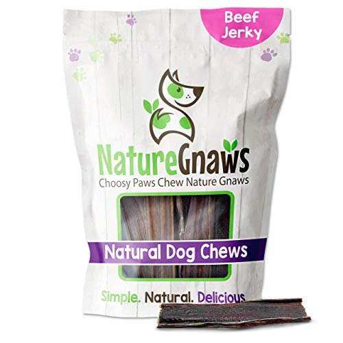 Nature Gnaws Beef Jerky Chews for Small Dogs - Premium Natural Beef Gullet Sticks - Simple Single Ingredient Tasty Dog Chew Treats - Rawhide Free - 4-5 Inch (10 Count)
