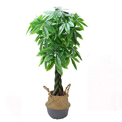 Yipianyun Palme Palmenbaum Königspalme, Cocospalme Kunstpflanze Kunstbaum Künstliche Pflanze Echtholz Hochzeit/Party Empfangstisch Blumen,Grau,140cm