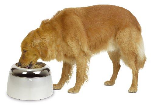 Dogit Elevated, Ciotola di Cibo per Cani di Taglia Grande