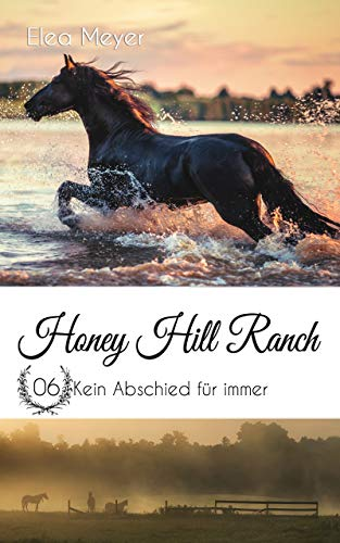 Honey Hill Ranch 06: Kein Abschied für immer