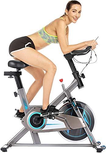 Heimtrainer Fahrrad für Zuhause,Fitnessbike Belt Drive mit APP-Anschluss, einstellbarer Widerstand, LCD-Monitor, bequemes Kissen, Leise für das Cardio-Training im Fitnessstudio zu Hause