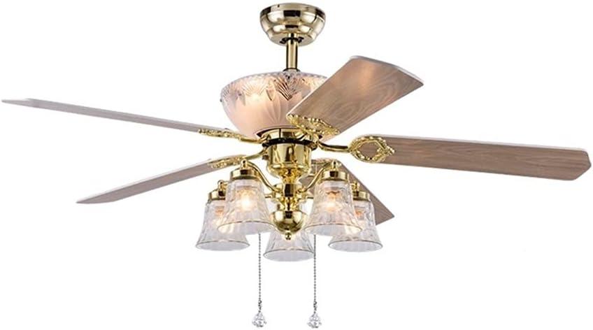 Luz de ventilador de techo de 48