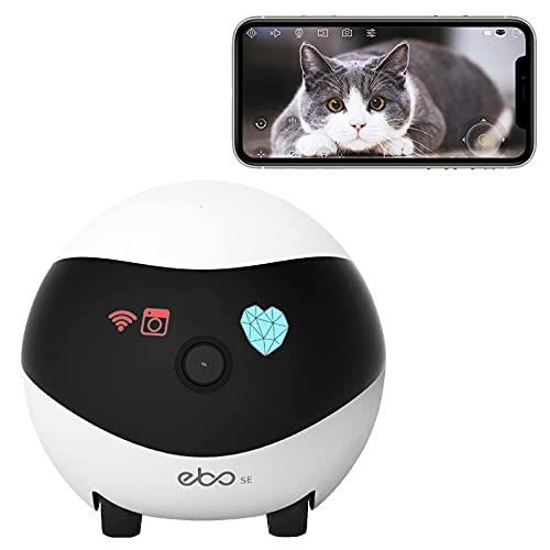 Enabot Ebo SE Cámara de Seguridad móvil, cámara IP Interior con Control Remoto, cámara para Mascotas 1080P, visión Nocturna, Crucero automático y Carga automática, Audio bidireccional