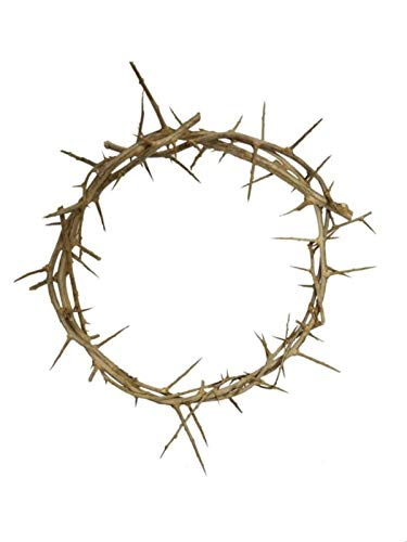 """Bethlehem Gifts TM Decorative 12"""" Authentic Real Fresh Jesus Crown of Thorns from The Holy Land"""