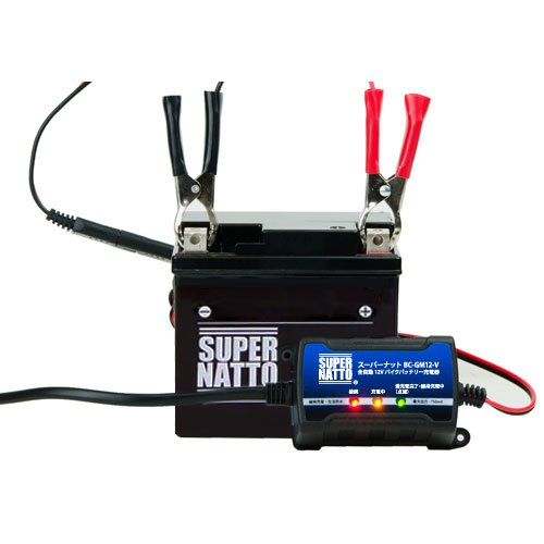 41LN6TPB3 L - 『スーパーナットバッテリー』は、コスパに秀でた良い商品だと思うのでオススメです