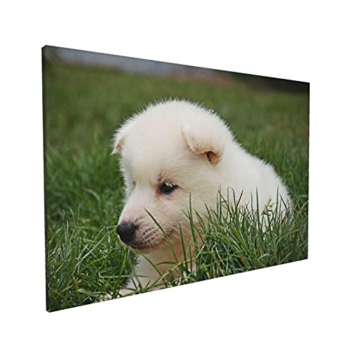 Lsjuee Animal Samoyed lindo perro blanco césped cachorro perro perro peludo, decoración lienzo arte pared dormitorio 40 x 60 cm