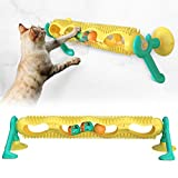 LI-GELISI Pet cat Toy Track Ball cat Toy Special Plate Training Function Improve Intelligence