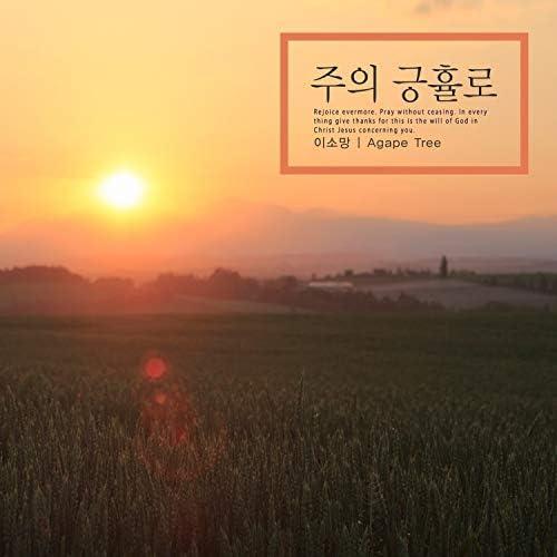 Lee Somang