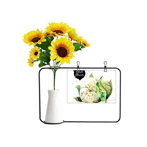 Beauty Gift Blumenkohl, Gemüse, schmackhaft, gesund, Aquarell, künstliche Sonnenblumenvasen, Flasche Segenskarte
