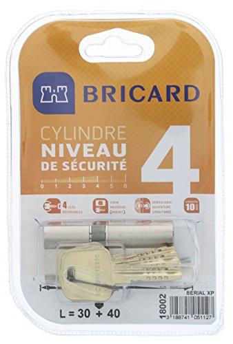 Bricard 18002 Cylindre de serrure double entrée Serial Xp 30+40 Nickelé