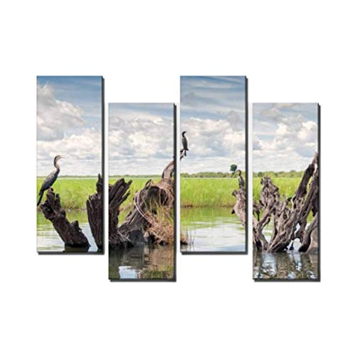 Wocatton uccelli acquatici su tronchi nel fiume chobe Endangered Stock Wall Art Background Decor Pictures Print On Canvas Art Stretched and Framed Perfect Home Decoration