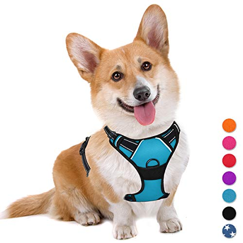 BARKBAY Dog Harness No-Pull Pet Harness Adjustable Outdoor Pet Vest 3M Reflective Oxford Material Vest for Dogs Easy Control for Small Medium Large blue Dogs (M)