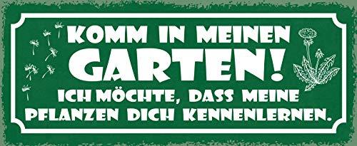 FS Komm in Mein Garden Jardin, Je Voudrais Que Mes Plantes Vous connaissent Une Plaque en tôle bombée en métal 10 x 27 cm