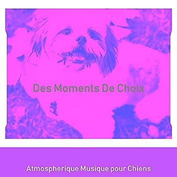 Des Moments De Choix