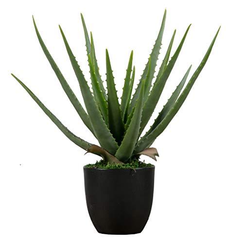 PEGANE Plante Artificielle Aloe Vera Coloris Vert 46cm - Dim : 46 x 14 x 14 cm