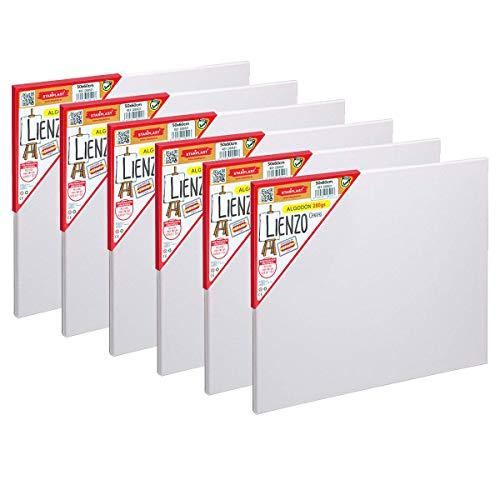Starplast Set 6 Lienzos Preestirados, Lienzos para Pintar, 50x60 cm, Lienzos Blancos, Lienzos Artísticos, Canvas de Algodón, 280 gr para Pintura Acrílica, Óleo, Gouache, Tempera