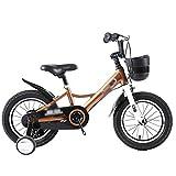 ZMDZA Bicicletas for niños, Bicicletas niños niñas 14 16 Pulgadas de Bicicletas, Bicicletas Kinder Cochecito Antideslizante de Bicicletas niños de Todas Las Alturas Chico de Ciudad Buggy