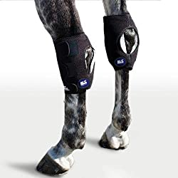 hock ice boots